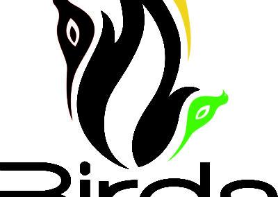 3-birds